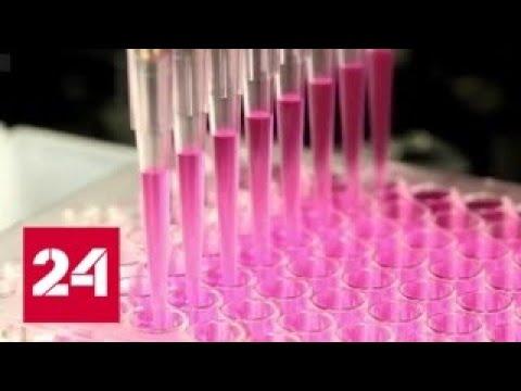 Свиной грипп возвращается: штамм-убийца придет в Россию - Россия 24