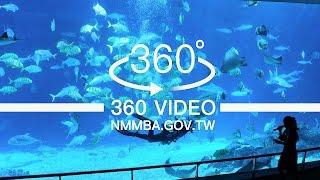 海生館VR360度影片:台灣水域館-大洋池餵食秀