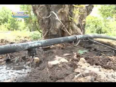 21 03 2014 water management in agriculture a special programme on the eve of world water day