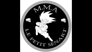 ITEP - Petit Sénart - MMA - Freddy Lepine