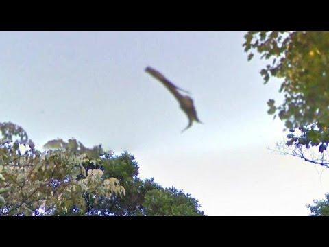 UFO SHOCKER!! BIOLOGICAL Flying Serpent!!? STRANGE Humanoid Figure WALKS AREA 51 [GUN ON MARS] 2016