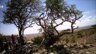 Safari Kenia y Tanzania 2014