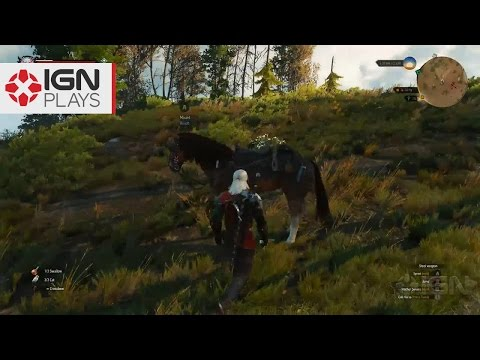 how to get infinite crowns in witcher 3
