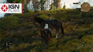finding a huge cache of rare loot in witcher 3 ign plays live