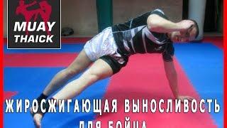 Тайский бокс упражнения - Жиросжигающая выносливость для бойца(Бесплатные и проверенные 4 видео урока покажут как Освоить идеальную технику Муай Тай уже через 2 недели,..., 2015-05-18T03:54:56.000Z)