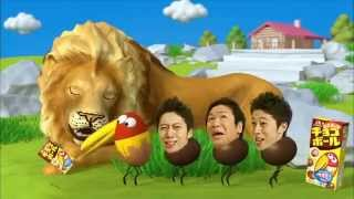 Choco Balls at the Zoo Seriously Japan!?!