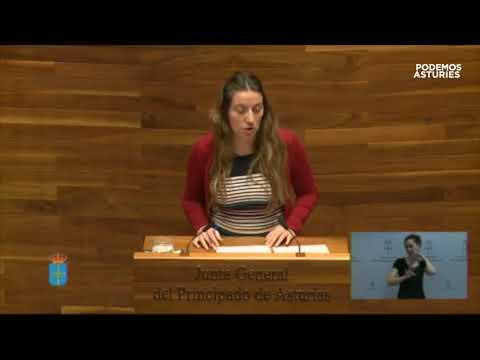Informe de la Comisión de Peticiones y Derechos Fundamentales