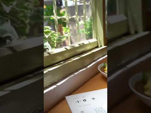 宜蘭美食 馬桂爺爺 咖哩專賣店