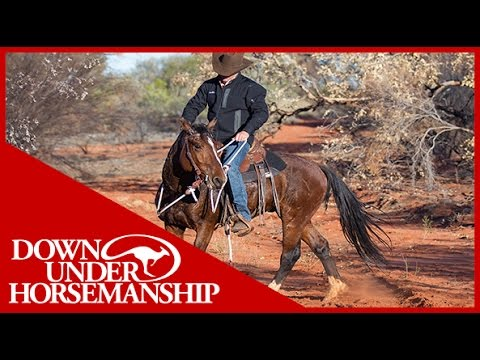 Clinton Anderson - Outback Adventure 10 of 14