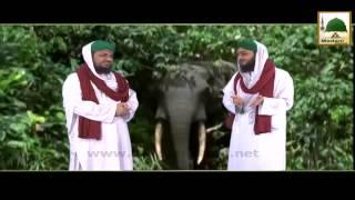 Hathi Ko Khuwab Me Dekhna Kesa - Part 02