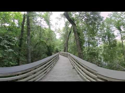 Lumber River Park 2D