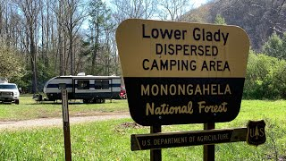 Free Camping - Lower Glady Dispersed Camping Area, Monongahela NF, WV