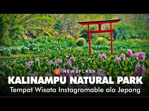 kalinampu-natural-park,-tempat-wisata-instagramable-ala-jepang-|-newsflash