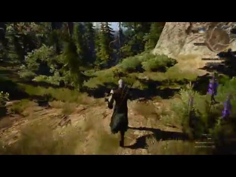 Witcher 3 is pretty