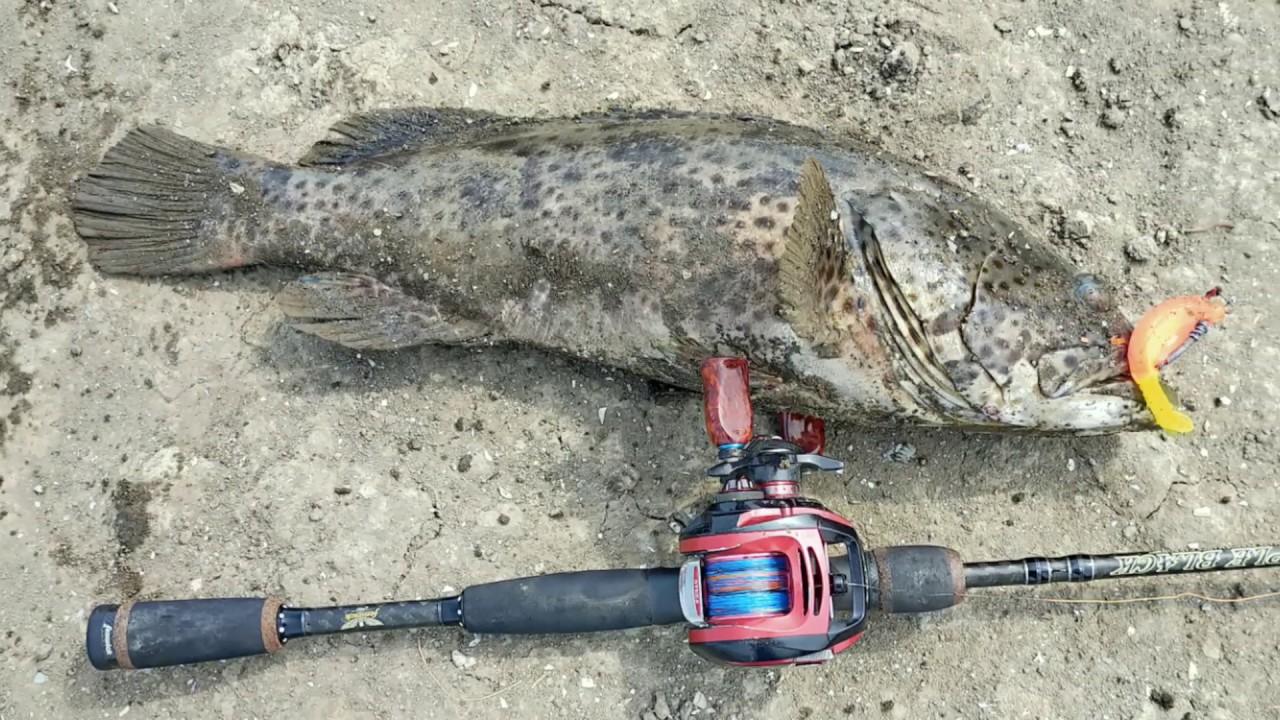 zเอ้ยย 5 cm. ปลาเก๋าก็ได้ ปลาช่อนก็ดี  #skipping