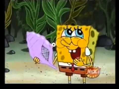 Spongebob what did you say!!!