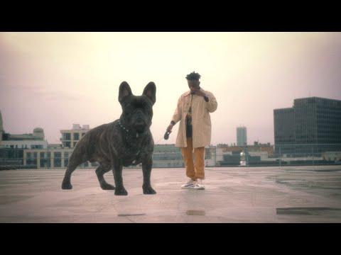 BRINGHIM - Dogzilla (Feat. Frank)