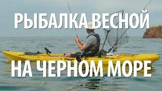 МОРСКАЯ РЫБАЛКА ВЕСНОЙ СПИННИНГОМ на ЧЕРНОМ МОРЕ в КРАСНОДАРСКОМ КРАЕ(Весенняя морская рыбалка в мае на Черном море спиннингом в Краснодарском крае. Увлекательная ловля ставрид..., 2017-03-06T11:28:53.000Z)