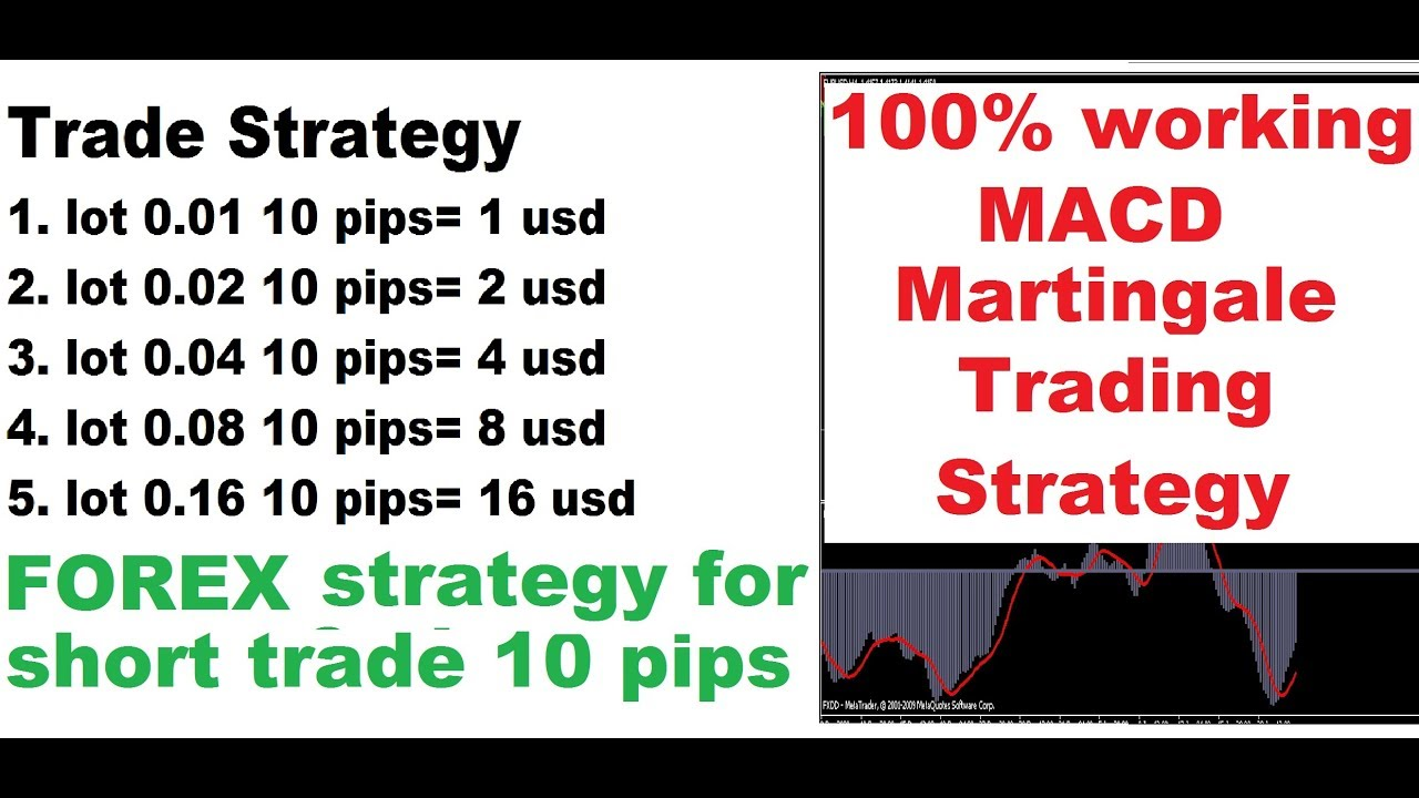 Martingale System Forex Ea The TSFX Expert Advisor Review