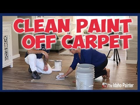 Quick Tips To Clean Paint Off Carpet