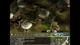 Icewind Dale 2 GamePlay - 040 - Drider