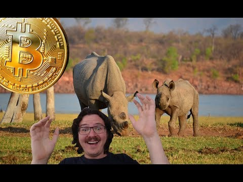 Bitcoin News - Gold, Zimbabwe, Mass Adoption and Clowns