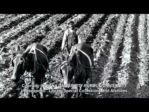 New Farmers of America (NFA) Remembered - YouTube