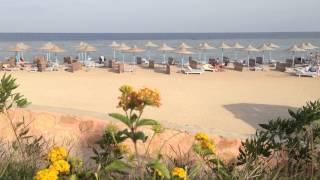 Небольшой Клип о отдыхе в Египте, Район Марса Алам.(Небольшой Клип о отдыхе в Египте, Район Марса Алам, отель Fantazia Resort. Одна веселая компания встречала Новый..., 2013-01-07T08:00:03.000Z)
