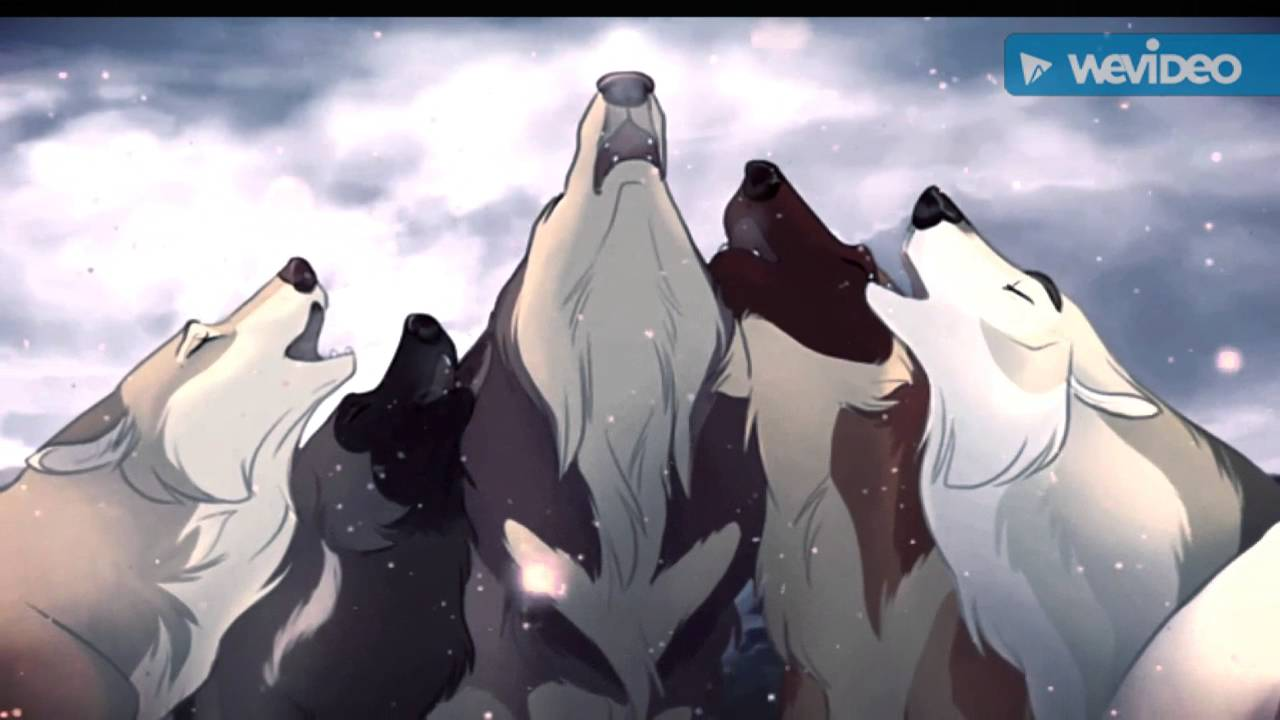 Anime Wolves Sad Song Youtube