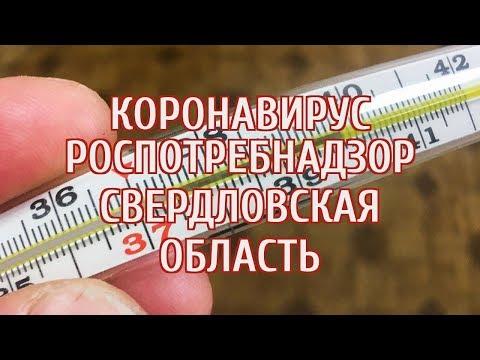 🔴 В Свердловской области объявили эпидемию