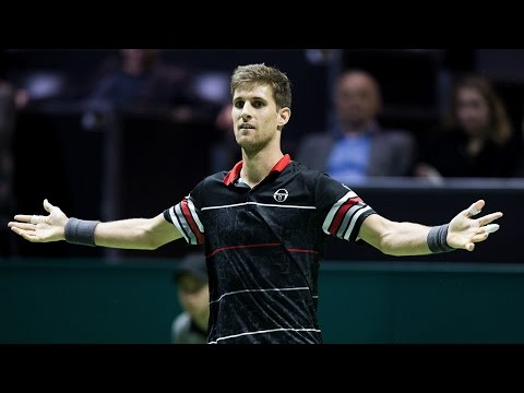 2016 ABN AMRO World Tennis Tournament - Final Highlights