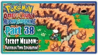 Pokemon Omega Ruby and Alpha Sapphire - Part 38: Secret Meadow & Pacifidlog Town! (FaceCam)