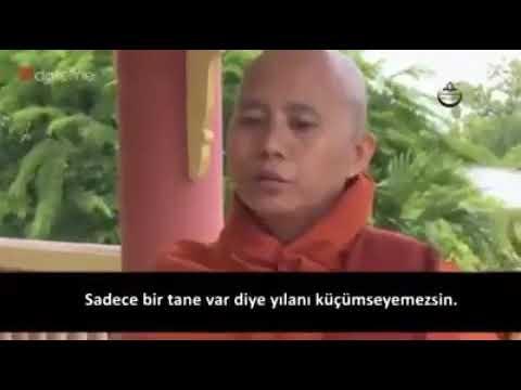 arakanda budist soysuz!