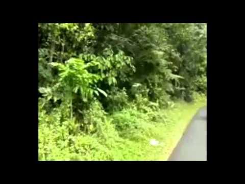 #bikepacker HARAU - KELOK 9 - PAYAKUMBUH - BUKITTINGGI - PADANG