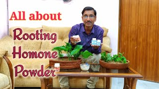 What are Rooting Hormone Powders : Types , Prices , Uses , Specs and Availability.