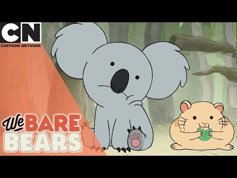We Bare Bears | Not So Cute Koala | Cartoon Network
