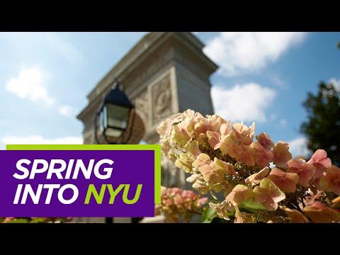 Nyu Spring 2020 Calendar Spring Admission
