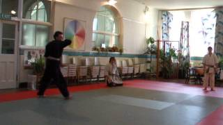 Sensei Rob Young Working On An Arial