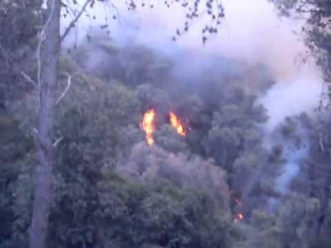 Начало пожара на горе Кармель Хайфа 02.12.2010