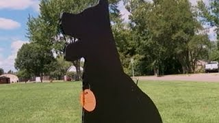 Fake Dogs Scare Real Geese From Wis. Park