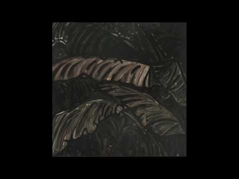 Acronym - Wrapped [SEMANTICA77]