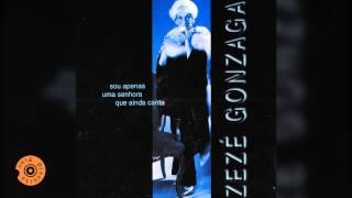 Todo o Sentimento (Zezé Gonzaga)
