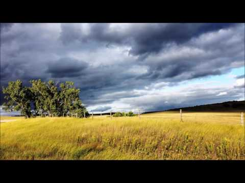 Field recording: 30 Minutes of Nature Sounds - rain / thunder/ animals (Zoom H4n)
