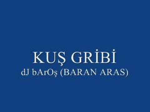 Kuş Gribi - Kars