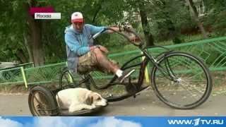 Московский изобретатель создал более 20 оригинальных моделей велосипедов(Заново изобретать велосипед становится модным занятием. Современные любители прогулок с ветерком доказыв..., 2014-06-08T15:14:12.000Z)
