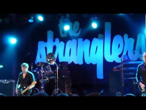 The Stranglers Convention 2011 - Shadows Live
