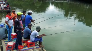 True Mrigal Fishing Videos By Using Fishing Rod & Reel