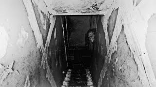 3 TRUE SCARY Haunted Basement Ghost Stories