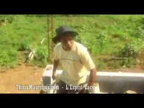 Trioco 2 - Dodo BB - Manev Macon