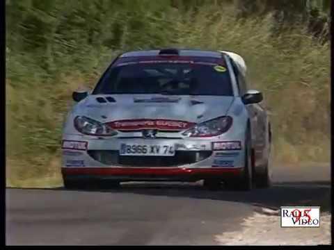 The Best of PEUGEOT 206 WRC